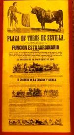 seville67