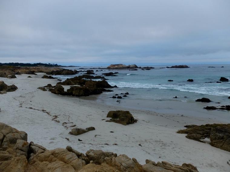 Monterey - 1 (28)