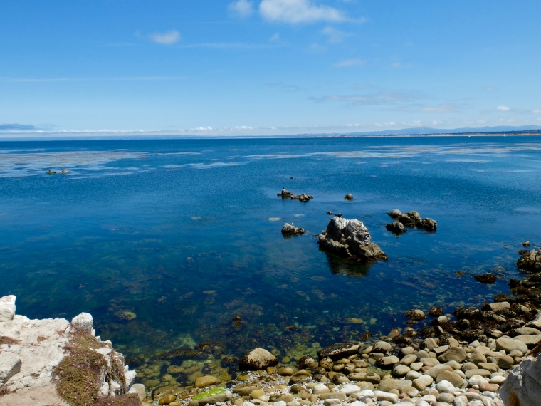 Monterey - 1 (3)