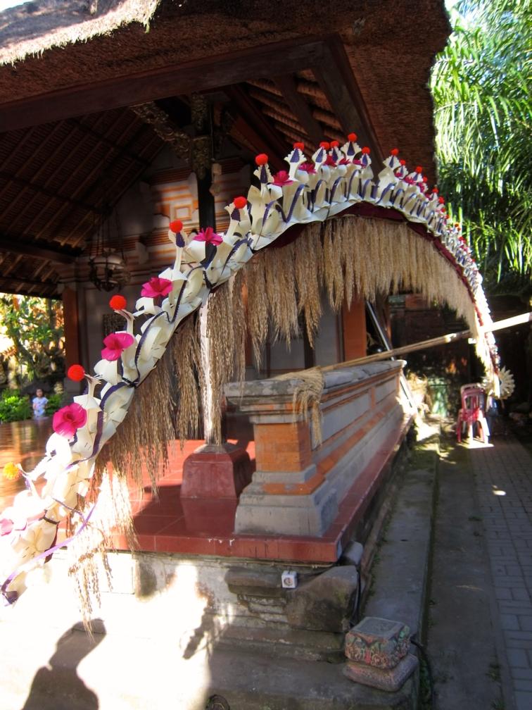 Bali - 1 (19)