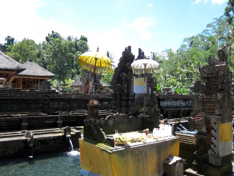 Bali - 1 (5)