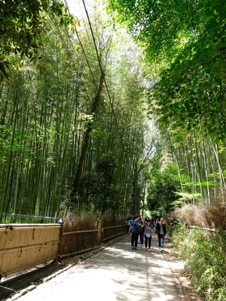 arashiyama1 - 1 (2)